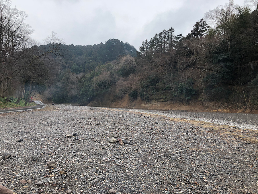 外遊び生活向上キャンプブログ 巾着田の画像