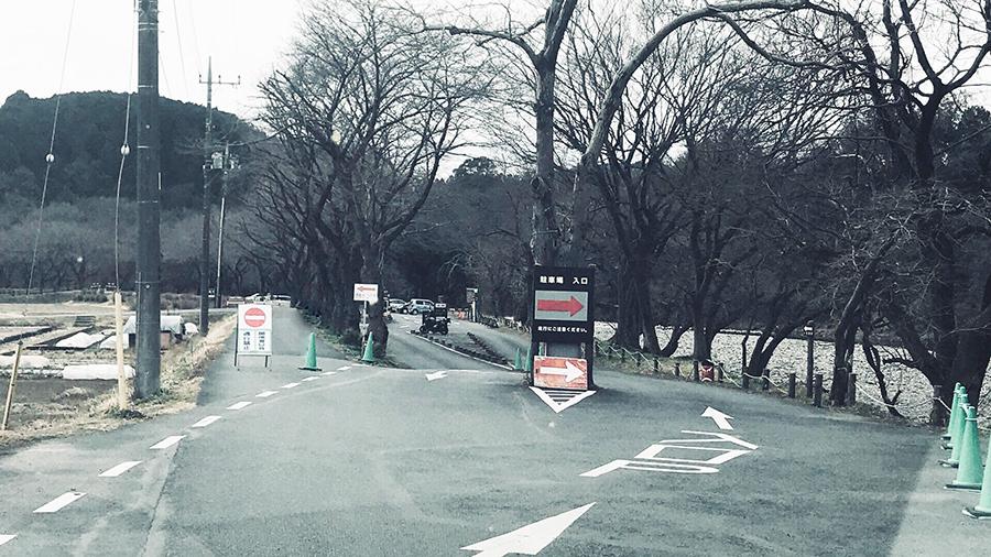 外遊び生活向上キャンプブログ 巾着田駐車場入り口の画像