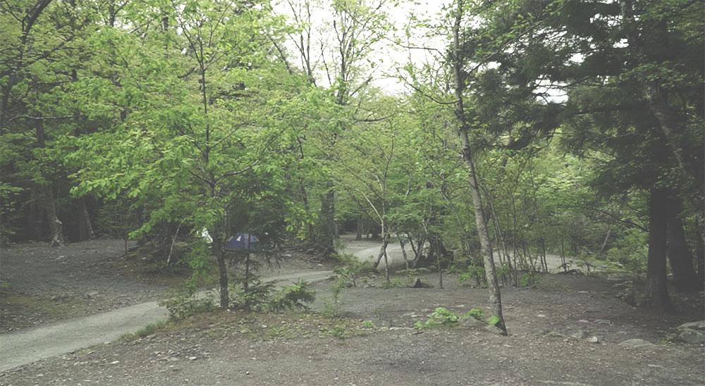 初道志の森キャンプ場 到着の画像