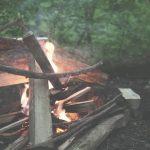 キャンプの醍醐味 焚火 薪はどうしてますか?